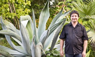 Paco and maguey plant